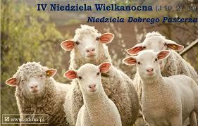IV Niedz. Wielkanocna. Ogłoszenia i intencje mszalne 3-11.05.2020 r.
