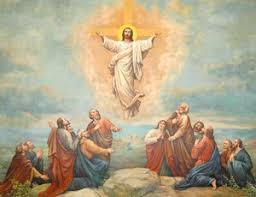 Ogłoszenia duszp. – Wniebowstąpienie 18.05.2020 r.